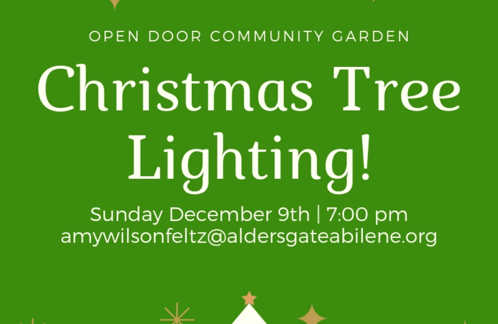 Tree Lighting @ the Open Door Community Garden
